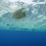 UM OCEANO DE PLÁSTICO_fotos (13)